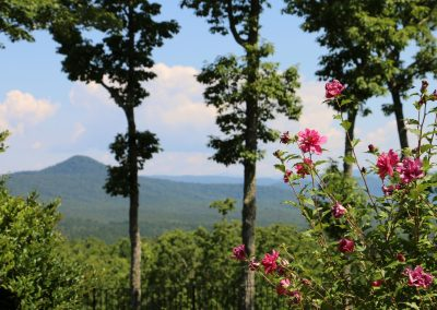 Get away from the city at Keowee Mtn